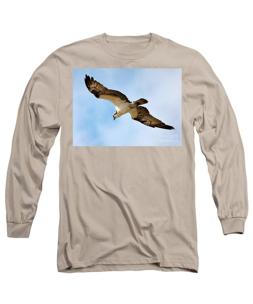 Hunter Osprey Long Sleeve T-Shirt by Carol Groenen