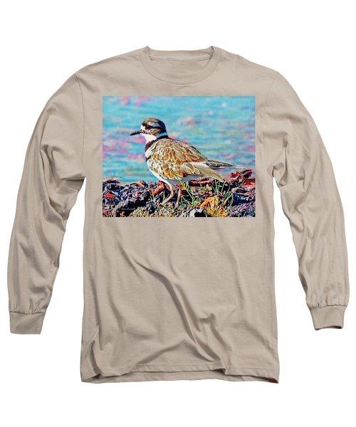 Killdeer  Long Sleeve T-Shirt by Ken Everett
