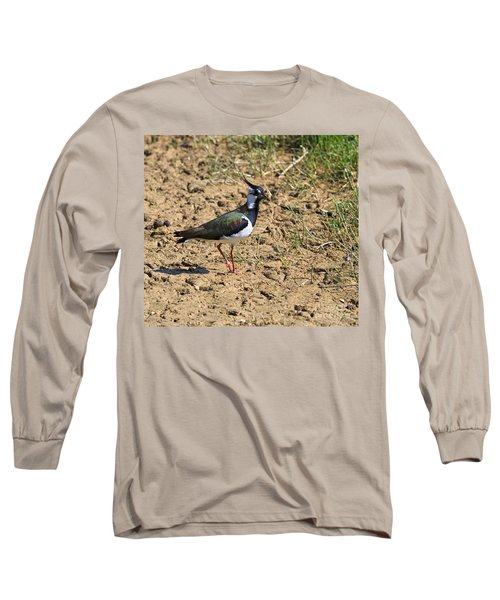 Northern Lapwing Long Sleeve T-Shirt by Louise Heusinkveld
