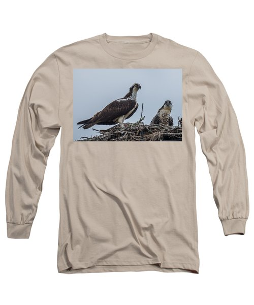 Osprey On A Nest Long Sleeve T-Shirt by Paul Freidlund