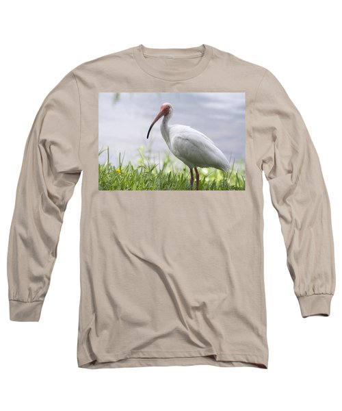 White Ibis  Long Sleeve T-Shirt by Saija  Lehtonen