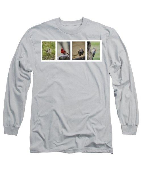 Backyard Bird Series Long Sleeve T-Shirt by Heather Applegate