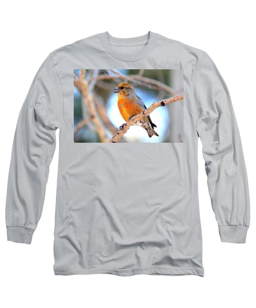 Red Crossbill On Aspen Long Sleeve T-Shirt by Marilyn Burton