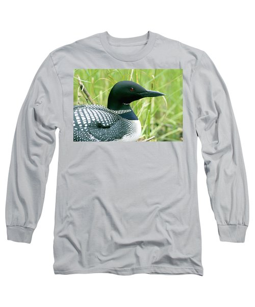 Common Loon, La Mauricie National Park Long Sleeve T-Shirt by Philippe Henry