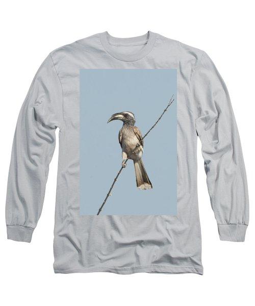 African Grey Hornbill Tockus Nasutus Long Sleeve T-Shirt by Panoramic Images