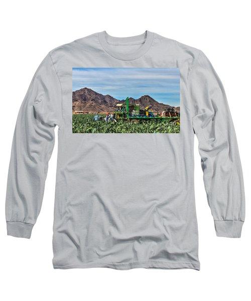 Broccoli Harvest Long Sleeve T-Shirt by Robert Bales