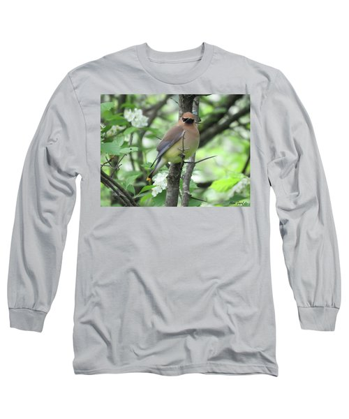 Cedar Wax Wing Long Sleeve T-Shirt by Alison Gimpel