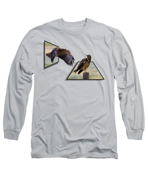 Hawks Long Sleeve T-Shirt by Shane Bechler