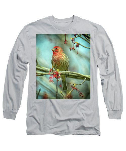 Long Sleeve T-Shirt featuring the photograph House Finch In Spring by Rodney Campbell