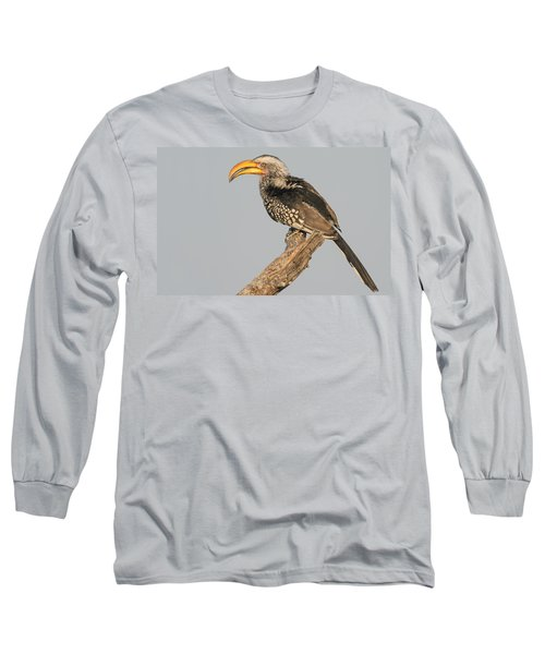 Southern Yellow-billed Hornbill Tockus Long Sleeve T-Shirt by Panoramic Images