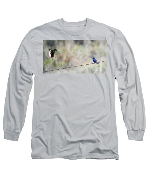 Starling Attack Long Sleeve T-Shirt by Mike Dawson