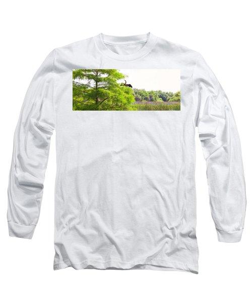 Anhinga Anhinga Anhinga On A Tree Long Sleeve T-Shirt by Panoramic Images