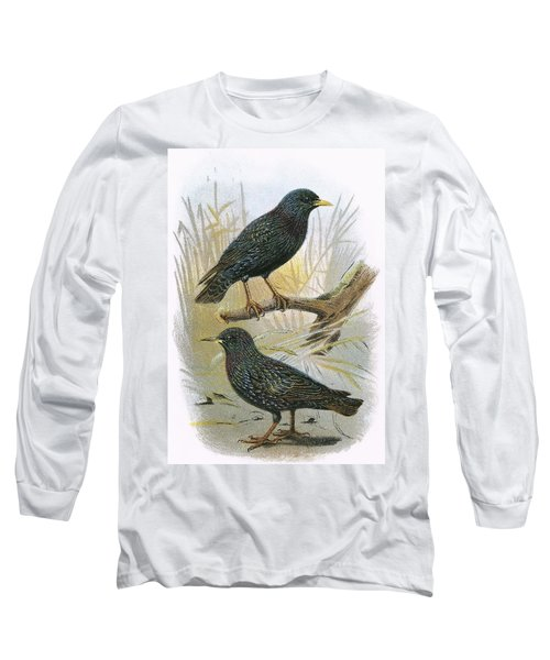 Common Starling Top And Intermediate Starling Bottom Long Sleeve T-Shirt by English School