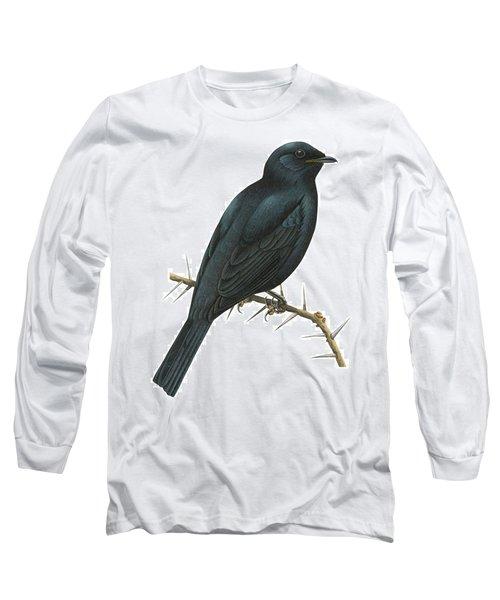 Cuckoo Shrike Long Sleeve T-Shirt by Anonymous