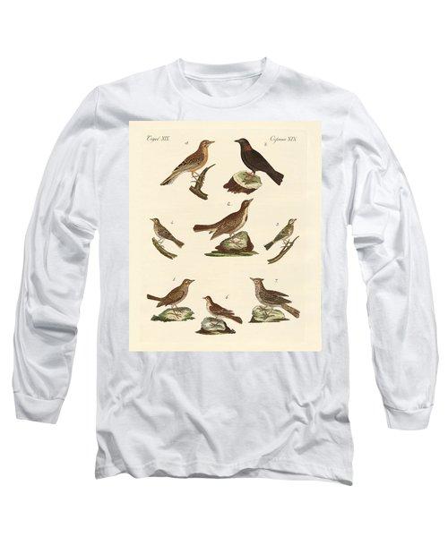 Different Kinds Of Larks Long Sleeve T-Shirt by Splendid Art Prints