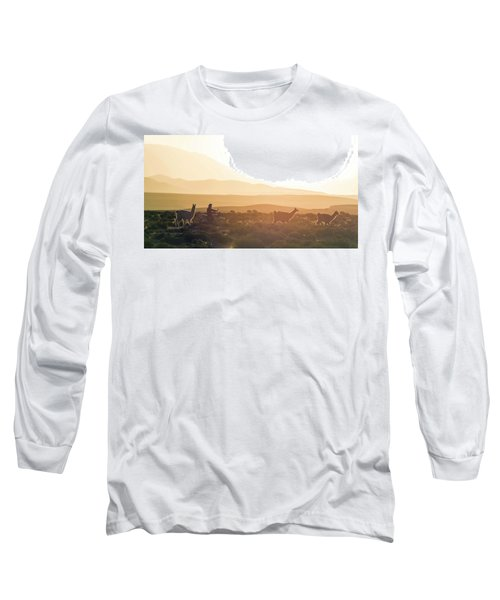 Herd Of Llamas Lama Glama In A Desert Long Sleeve T-Shirt by Panoramic Images