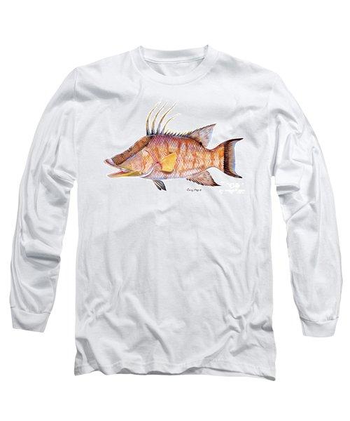 Hog Fish Long Sleeve T-Shirt by Carey Chen