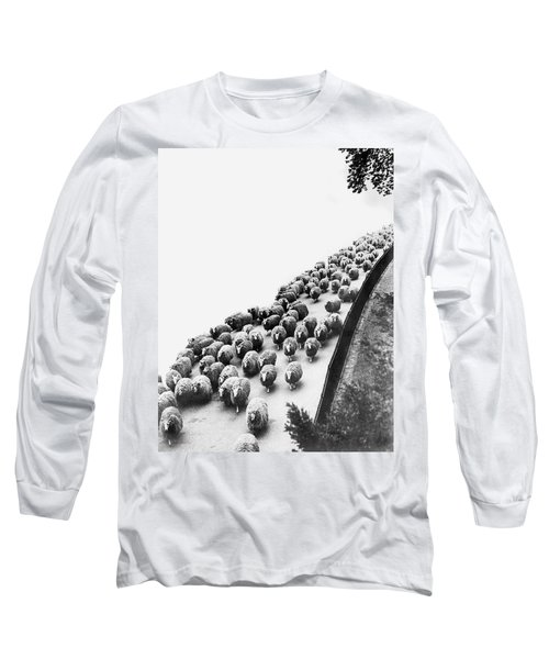 Hyde Park Sheep Flock Long Sleeve T-Shirt by Underwood Archives