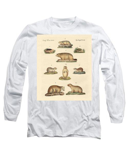 Marmots And Moles Long Sleeve T-Shirt by Splendid Art Prints