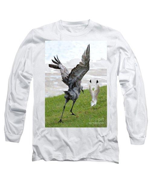 Sandhill Chasing Ibis Long Sleeve T-Shirt by Carol Groenen