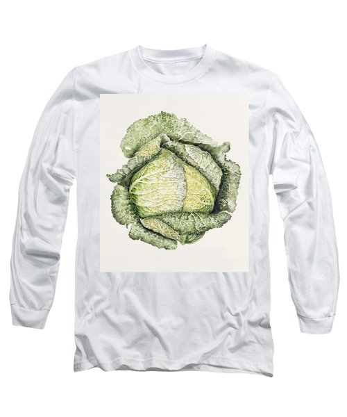 Savoy Cabbage  Long Sleeve T-Shirt by Alison Cooper