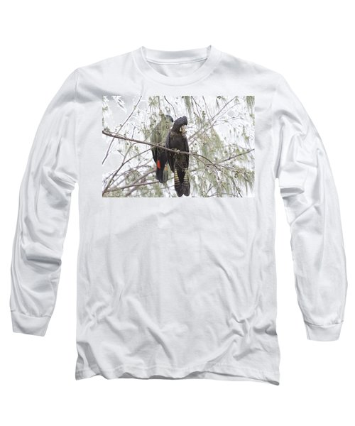 Red Tailed Black Cockatoos Long Sleeve T-Shirt by Douglas Barnard