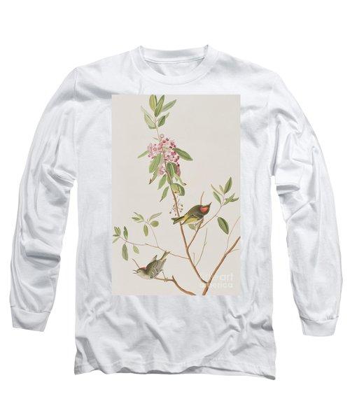 Ruby Crowned Wren Long Sleeve T-Shirt by John James Audubon