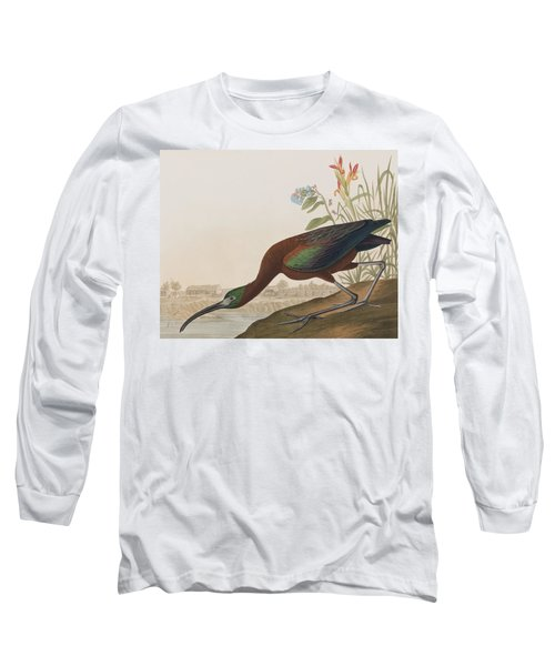 Glossy Ibis Long Sleeve T-Shirt by John James Audubon