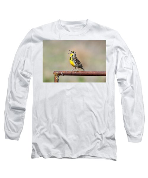 A Morning Song Long Sleeve T-Shirt by Michael Morse