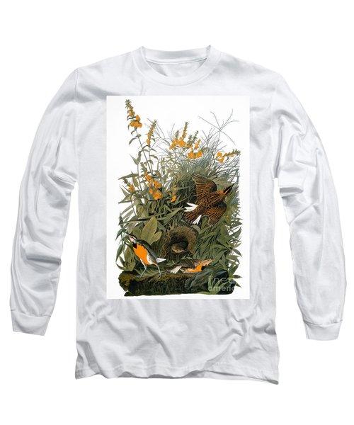 Audubon: Meadowlark Long Sleeve T-Shirt by Granger