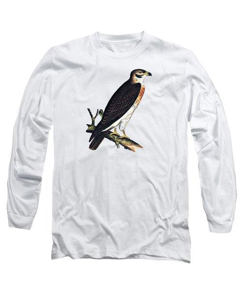 Hawk Swainsons Hawk Long Sleeve T-Shirt by Movie Poster Prints