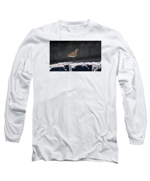 Killdeer Long Sleeve T-Shirt by M Images Fine Art Photography and Artwork