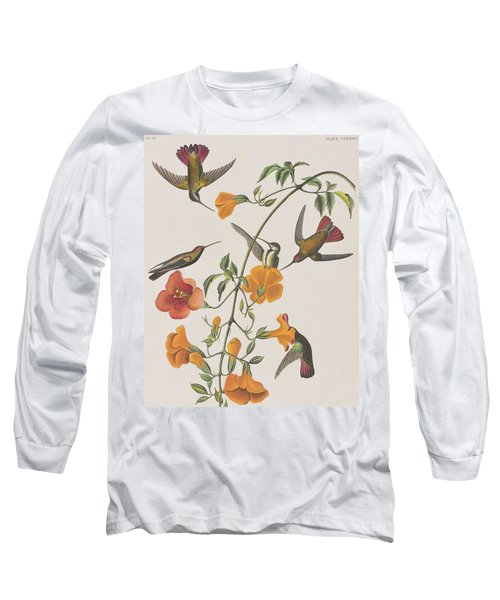Mango Humming Bird Long Sleeve T-Shirt by John James Audubon