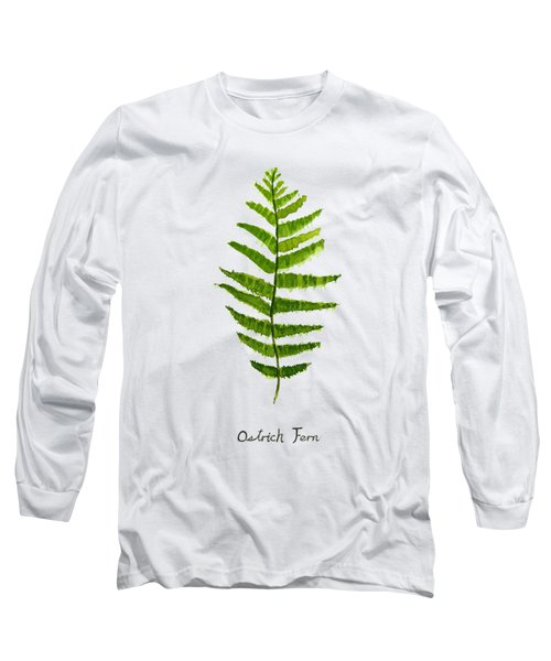 Ostrich Fern Long Sleeve T-Shirt by Color Color