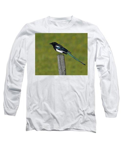Prairie Perch Long Sleeve T-Shirt by Tony Beck