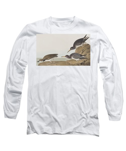 Purple Sandpiper Long Sleeve T-Shirt by John James Audubon