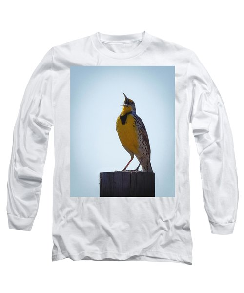 Sing Me A Song Long Sleeve T-Shirt by Ernie Echols