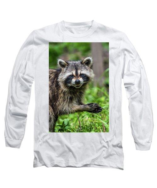 Smiling Raccoon Long Sleeve T-Shirt by Paul Freidlund