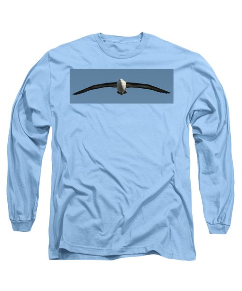 Black-browed Albatross Thalassarche Long Sleeve T-Shirt by Panoramic Images