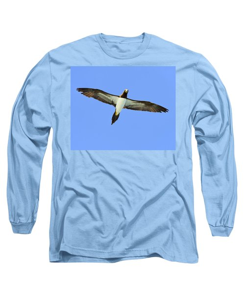Brown Booby Long Sleeve T-Shirt by Tony Beck
