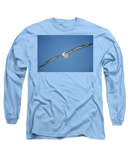 Laysan Albatross Soaring Hawaii Long Sleeve T-Shirt by Tui De Roy