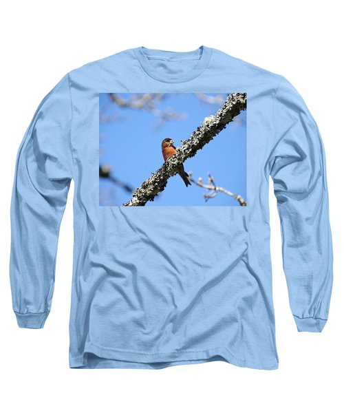 Red Crossbill Finch Long Sleeve T-Shirt by Marilyn Wilson