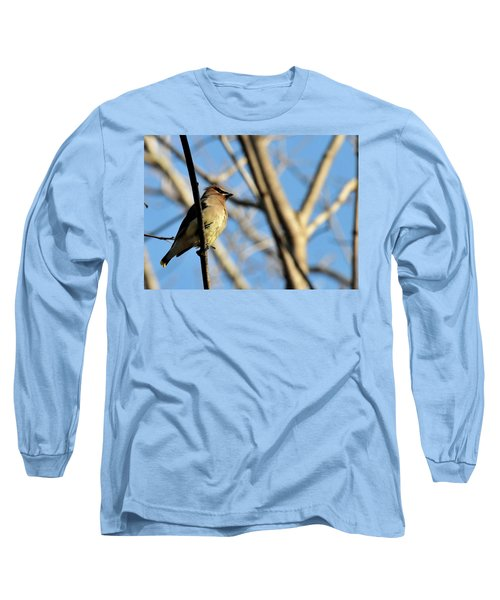 Cedar Wax Wing Long Sleeve T-Shirt by David Arment