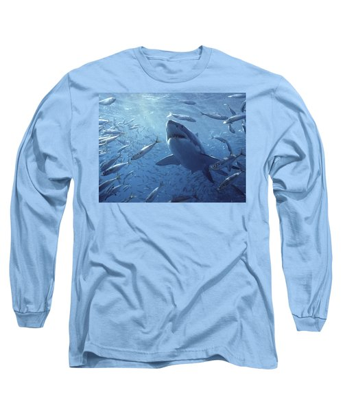 Great White Shark Carcharodon Long Sleeve T-Shirt by Mike Parry