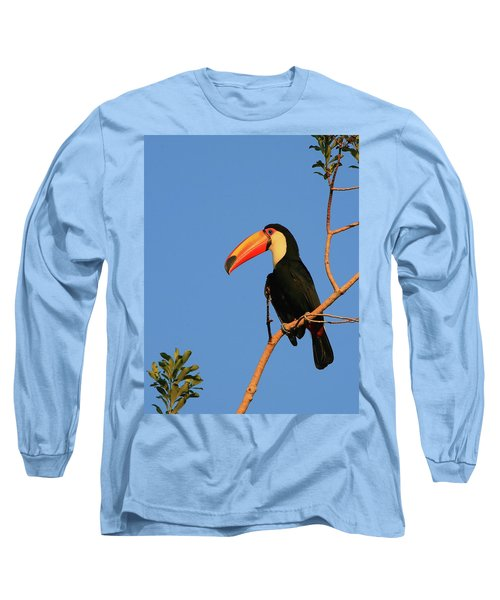 Toco Toucan Long Sleeve T-Shirt by Bruce J Robinson