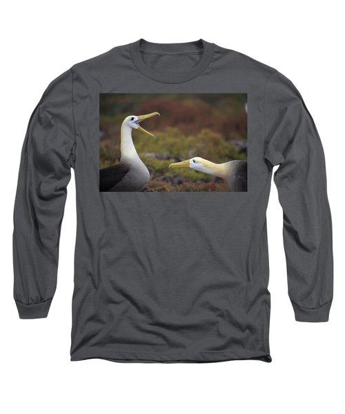 Waved Albatross Courtship Display Long Sleeve T-Shirt by Tui De Roy