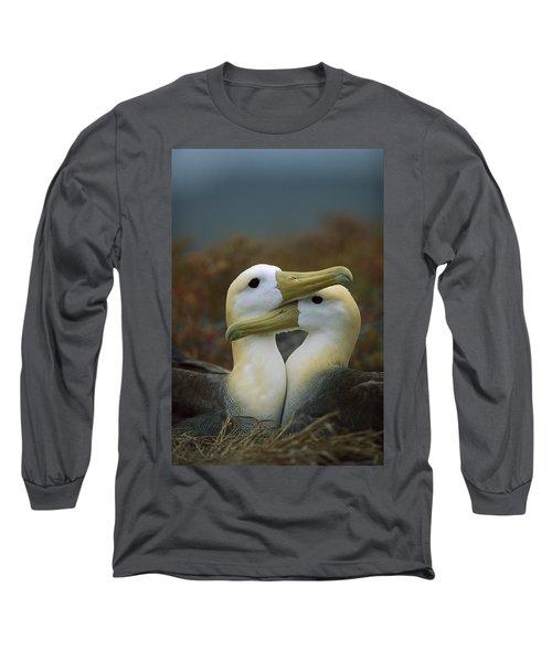 Waved Albatross Pair Bonding Galapagos Long Sleeve T-Shirt by Tui De Roy