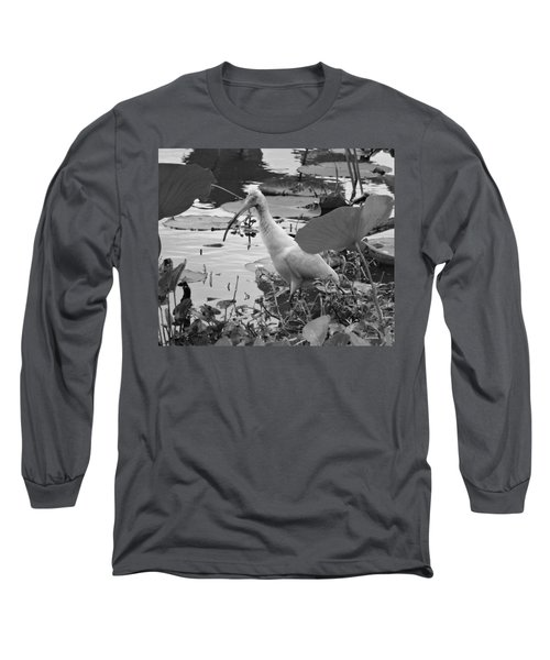 American White Ibis Black And White Long Sleeve T-Shirt by Dan Sproul