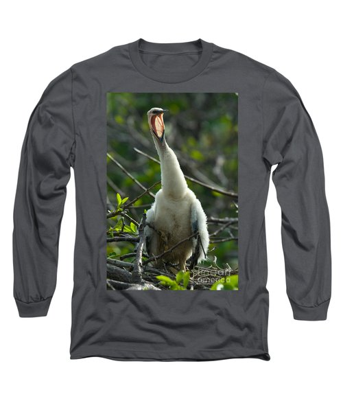 Anhinga Chick Long Sleeve T-Shirt by Mark Newman