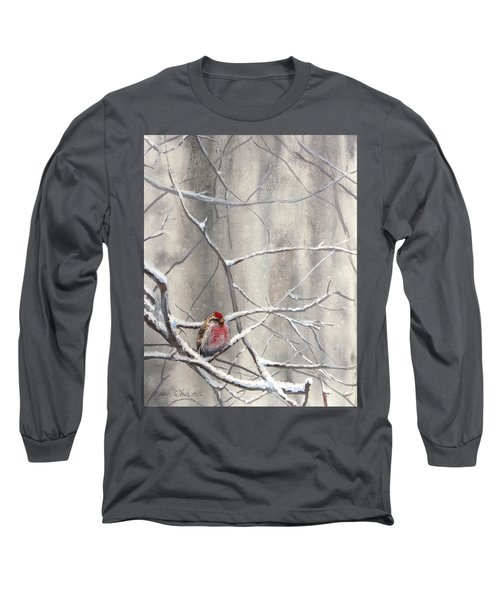 Eyeing The Feeder Alaskan Redpoll In Winter Long Sleeve T-Shirt by Karen Whitworth
